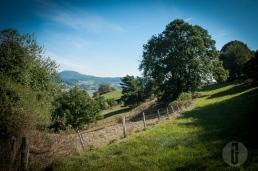 bergsee_2013-28