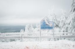 schnee (30 von 38)