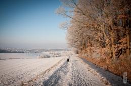 schnee (11 von 26)
