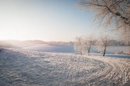 schnee (16 von 26)