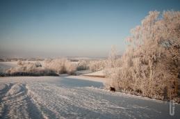 schnee (18 von 26)