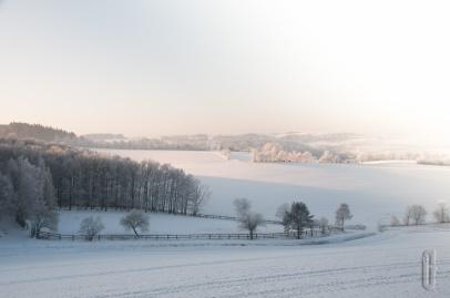 schnee (7 von 26)
